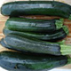 Squash: Black Beauty Zucchini