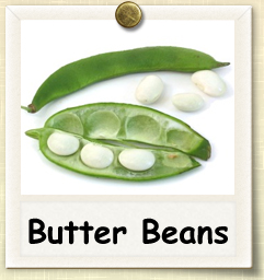 How to Grow Butter Beans | Guide to Growing Butter Beans