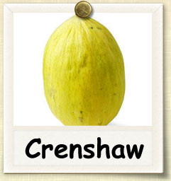 How to Grow Crenshaw Melon | Guide to Growing Crenshaw Melon