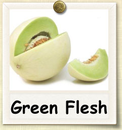 How to Grow Green Flesh Honeydew | Guide to Growing Green Flesh Honeydew