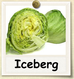 How To Grow Iceberg Lettuce Guide To Growing Iceberg Lettuce