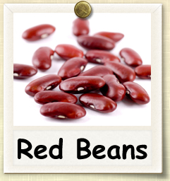 How to Grow Red Beans | Guide to Growing Red Beans
