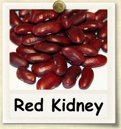 How to Grow Red Kidney Beans | Guide to Growing Red Kidney Beans