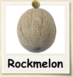 How to Grow Rockmelon | Guide to Growing Rockmelon