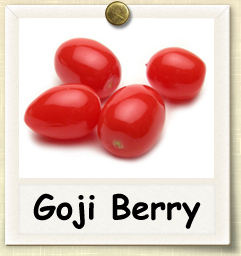How to Grow Goji Berry | Guide to Growing Goji Berries