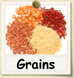 How to Sprout Grains | Guide to Sprouting Grains