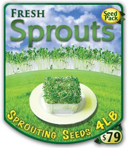 Heirloom Organic Sprouting Seeds