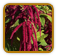Heirloom Amaranth Seed | Seeds of Life
