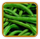 Heirloom Bean Seed | Seeds of Life