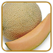 Heirloom Cantaloupe Seed | Seeds of Life