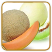 Organic Melon Seed | Seeds of Life