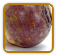 Heirloom Rutabaga Seed | Seeds of Life