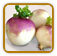 Heirloom Turnip Seed | Seeds of Life