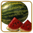 Organic Watermelon Seed | Seeds of Life